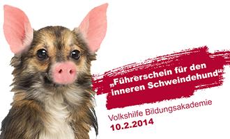 Führerschein für den inneren Schweinehund